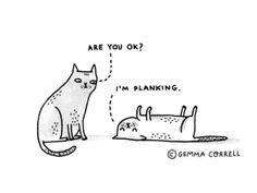 planking by gemma correll, via Flickr