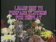 Hand Carved Wood Flowers Instructional Video by Duane Spence Carved Wood, Hand Carved, Wood Flowers, Gypsy, Carving, Youtube, Diy, Branches, Trunks
