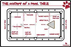 10 Pool Commandments Pool Is Cool Funny Images
