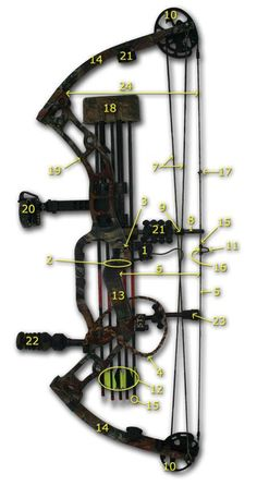 A detailed list of the parts of a compound bow and arrows with definitions as well as a numbered illustration along with a glossary of archery terms.