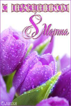 Happy B Day, Beauty Secrets, Birthday Cards, March, Happy Brithday, Bday Cards, Beauty Tips, Happy Birthday, Congratulations Card