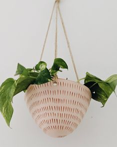 Indoor Planters, Ceramic Planters, Household Plants, White Clay, Hanging Planters, Earthenware, Plant Hanger, Terracotta, Hand Carved