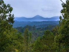 Talking Rock, Pickens County, Georgia land for sale - 325 acres at LandWatch.com