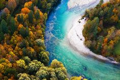Pristine+alpine+turquoise+river+meandering+through+forested+landscape+in+a+sunny+autumn+day+aerial+view.+Pristine+clean+nature+pure+water+environment+concept.