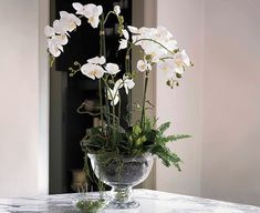 White Phalaenopsis Orchid and Foliage Arrangement | Bloom Artificial Flowers