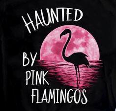 Flamingo Decor, Pink Flamingos, Pink Bird, Pet Rocks, Having A Bad Day, Spirit Animal, Pet Birds, How To Memorize Things, Funny Quotes