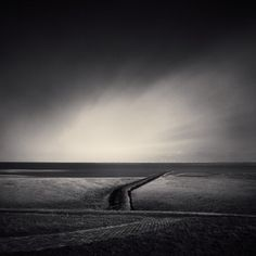 Denis Olivier, POLDER LINE, BIERUM, THE NETHERLANDS, OCT 22, 2008 - #1220