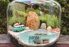 Mini Terrarium, Terrarium Scene, Terrarium Plants, Beach Gardens, Small Gardens, Moss Plant, Mini Bonsai, Inside Plants, Mini Fairy Garden