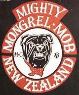 MC Razzia. 1% KLUBBAR som rockar Biker Clubs, Motorcycle Clubs, Sons Of Anarchy Cast, Harley Gear, Real Gangster, Mongrel, New Zealand, Patches, 1