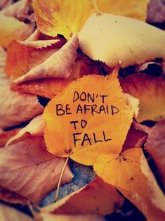 (47) fall quotes | Tumblr