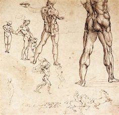 Anatomical+studies+-+Leonardo+da+Vinci