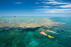 Diving and Snorkelling, Queensland, Australia