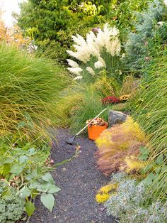 Create Texture. Ornamental grasses are a popular choice for adding fall and winter interest. Enhance their graceful texture by growing other plants with a delicate look, such as silvery sea holly flowers and golden bluestar foliage.// Better Homes & Gardens