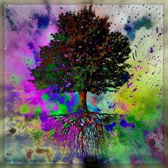 Hippy Tree Splash by Missi Lynn Boness