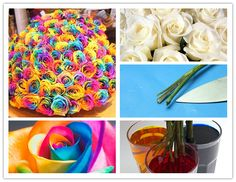 How To Make Colorful Rainbow Roses