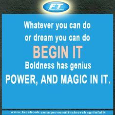 whatever you can do or dream you can do begin it, boldness has genius power and magic in it