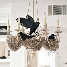 moss + ravens in chandelier = easy spooky Halloween decor