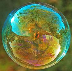 reflection in a bubble
