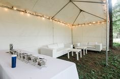 The cannibar: The couple erected a tent near their reception on a Christmas tree farm south of Portland for the 'weed bar' Tent Wedding, Outside Wedding, Green Wedding, Farm Wedding, Wedding Favors, Wedding Ideas, Wedding Decor, Wedding Planning, Cannabis