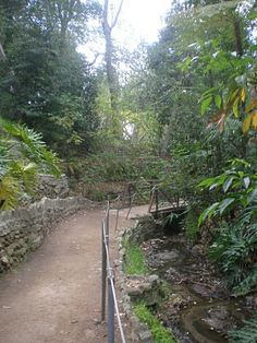 Climbing LA: Walk #32 - Fern Dell and Immaculate Heart