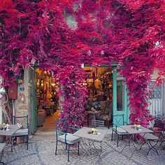 Some Where In Turkey & Living Places To Travel, Places To See, Travel Destinations, Turkish Airlines, Unique Architecture, Turkey Travel, Cozy Place, Belleza Natural, Santorini