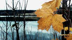 Autumn left.