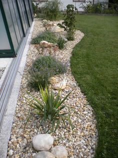 Shed Landscaping, Landscaping With Rocks, Landscaping Around Pool, Florida Landscaping, Rock Garden Design, Outdoor Gardens, Landscape Design, Garden Ideas, Flower Bed With Rocks