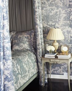 *This blue and white toile is my shower curtain -  make some throw pillows to coordinate - LOVE IT****