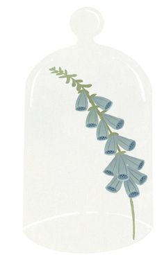 bluebells by Clare Owen Illustration, via Flickr