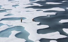 With Arctic Sea Ice Unusually Thin, Scientists Wary of Another Record Melt: The continuing meltdown could eventually alter Atlantic Ocean currents, which regulate the climate across much of the northern hemisphere.