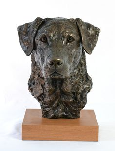 Cold Cast Bronze Dogs Hounds Bitches Puppies Sporting and Racing by Tanya Russell titled: 'Labrador Portrait (Commission Lifelike Head sculpture)'.