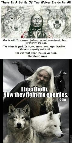 "This has always been my take on the ""Battle of Two Wolves"" story. **A battle of two wolves inside us. Odin's wolves Geri and Freki Wisdom Quotes, True Quotes, Great Quotes, Motivational Quotes, Inspirational Quotes, Daily Quotes, Qoutes, Citations Viking, Viking Quotes"