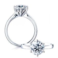 Platinum Protea Solitaire Diamond Engagement Ring- Browns. I'd just wear this, wouldn't need to be engaged.