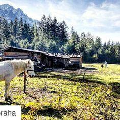 #Repost @kisspraha with @repostapp  #nature #landscape #sichuan #horses #chineselandscape #mountains #grassland #garze
