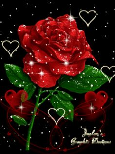 Red glitter gifli rose pictures, Animated Rose Pictures, Rose Gifs … – – Join the world of pin Rose Images, Rose Pictures, Rose Photos, Glitter Pictures, Beautiful Rose Flowers, Beautiful Gif, Beautiful Flowers, Hearts And Roses, Red Roses