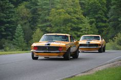 Twins-1970 Ford Boss 302 Mustangs - Lime Rock Historic Festival 2013