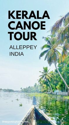 kerala india travel destinations in south asia. places to visit in india. things to do. backpacking south asia travel tips. mumbai to goa to kerala Kerala Travel, India Travel, India Trip, Kerala India, Delhi India, South India, Village Tours, Kerala Backwaters, Backpacking India