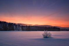 escapekit:  The Spirit of Winter A collection of winter photos...
