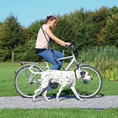 I WANT A DOG! Dog Activity Bicycle and Jogging Lead, £15.99