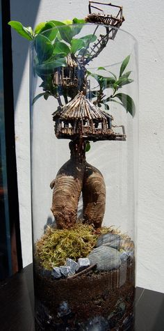 The ancient Japanese art of Bonsai creates a miniature version of a fully grown tree through careful potting, pruning and training. Even if you& not zen enough to labour over your own Bonsai,. Mini Terrarium, Terrarium Cactus, Indoor Garden, Indoor Plants, Mini Jardin Zen, Ancient Japanese Art, Decoration Plante, Gnome House, Fairy Houses