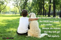 Teenager boy in the park with a golden retriever dog Poster. Pet Friendly Cabins, Plus Belle Citation, Loyal Dogs, Dog Poster, Dogs Golden Retriever, Retriever Dog, Therapy Dogs, Horse Therapy, Pet Loss