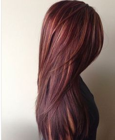 Rich red with golden caramel Hilights - modern salon
