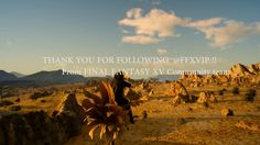 FINAL FANTASY XV THANK YOU FOR CHOCOBO KEEPERS!! -チョコボと過ごす1日-
