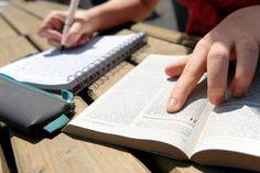 PREGANDO A  VERDADE: DEZ RAZÕES PARA LER E ESTUDAR A BÍBLIA.