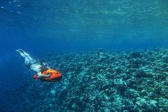 Speeding around with an #underwater motor scouter at #Anantara Kihavah villas, #Maldives and truly see it all