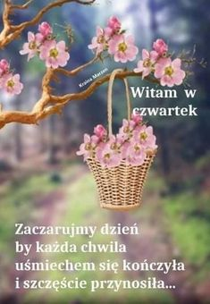Good Morning Funny, Morning Humor, Good Day, Wicker Baskets, Good Morning, Buen Dia, Hapy Day, Woven Baskets