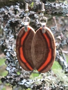 Small Wood Naturally Organic Lightweight Mega Sexy Monkey Puzzle Wood Earrings by forestlifecreations on Etsy