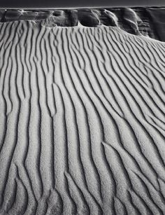 Philadelphia Museum of Art - Collections Object : Sand Dunes, Oceano, California