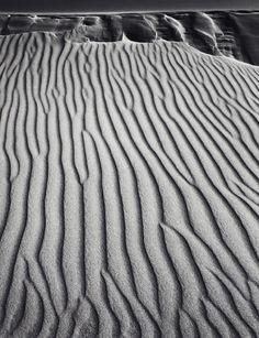 Philadelphia Museum of Art - Collections Object : Sand Dunes, Oceano, California