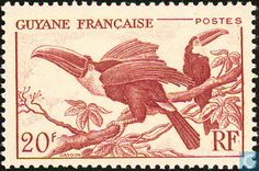 1947 French Guiana - Toucans
